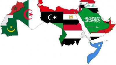 تقديم الاستشارات، وسحب وتصميم العينات في البلدان العربية.
